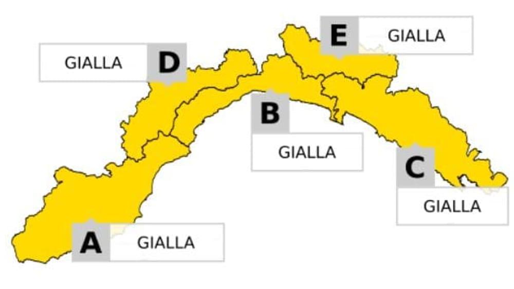 gialla su tutte le zone-2