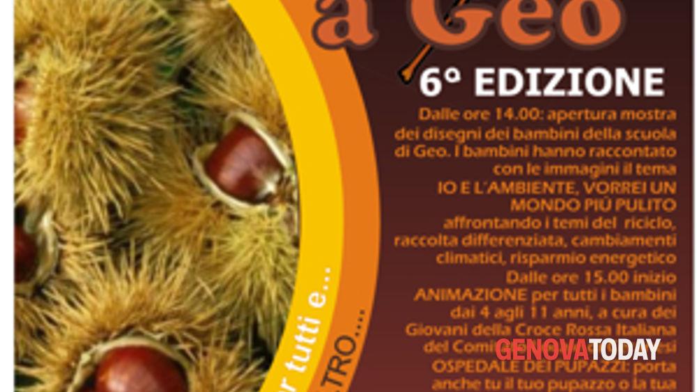 vi castagnata della croce rossa a geo (ceranesi)-5