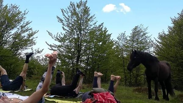 Weekend all'insegna del benessere del corpo e della mente nel Parco dell'Aveto