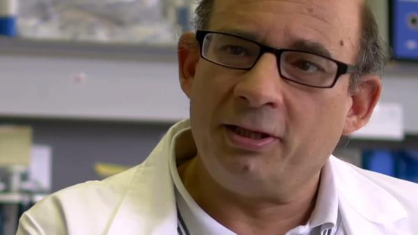 Progetto del Gaslini vince premio Telethon per studiare una malattia rara. Video