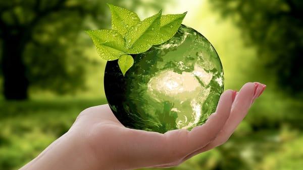 Progetto Gaia: presentazione del programma di educazione alla consapevolezza