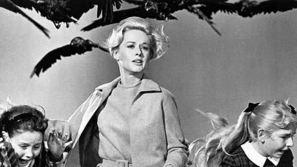 """""""Alfred Hitchcock nei film della Universal Pictures"""": la mostra al Ducale"""