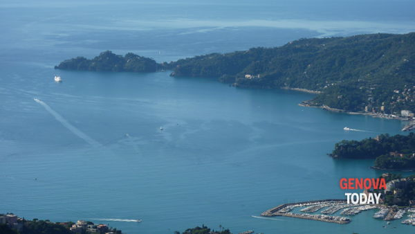 Il Parco di Portofino compie 81 anni e festeggia con escursioni e laboratori